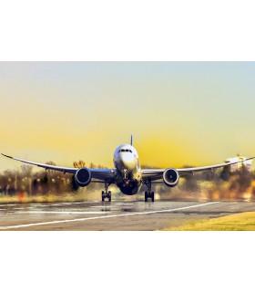 Gestión de Compañias Aéreas