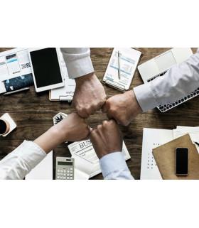 Control de Gestión en la Empresa